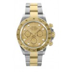 Rolex Daytona Champagne Diamond Dial Oyster Bracelet Mens Watch 116523CHD